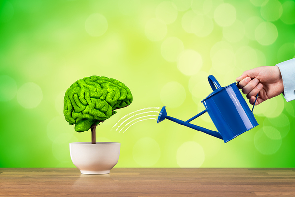 The real difference between creativity and innovation - Watering a plant shaped like a human brain.
